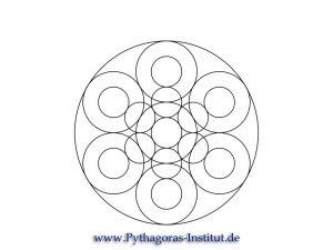 Mehrere Kreise ineinander geschachtelt in der Blume des Lebens