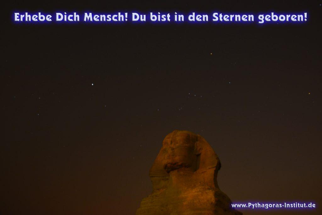 """Die Sphinx spricht: """"Erhebe Dich Mensch Du bist in den Sternen geboren"""""""